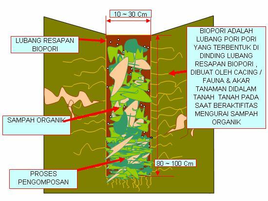 biopori